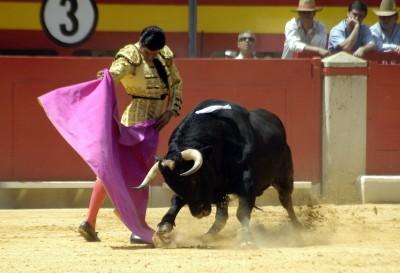 seguro-toreros